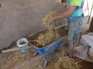 Adding straw to earth plaster